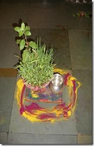 अश्विन नवरात्र