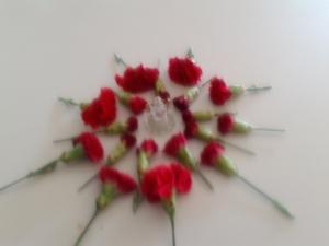 IMG_20130507_115252
